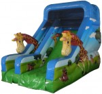 jumping castle hire sydney